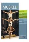 muskelkater_2019_01.pdf
